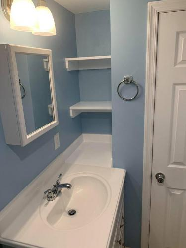 Bathroom remodeling shelving and painting